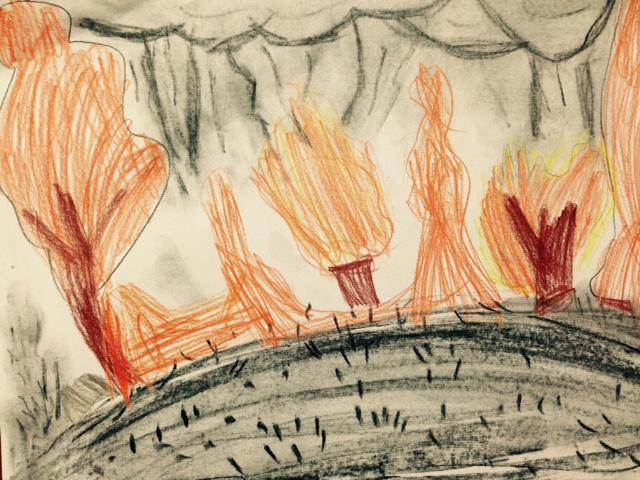 Bush Fire 7yo Drawing