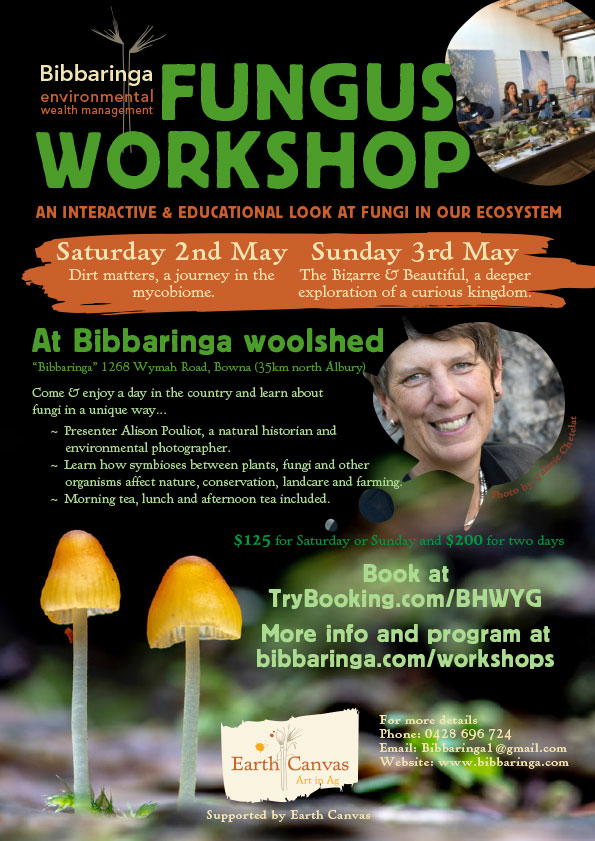 Fungus Workshop